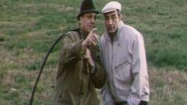 Фильм «Год теленка» (1986)