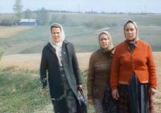 """Фильм """"Вдовы"""" (1976)"""